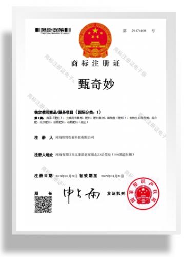 商标注册证书-甄奇妙