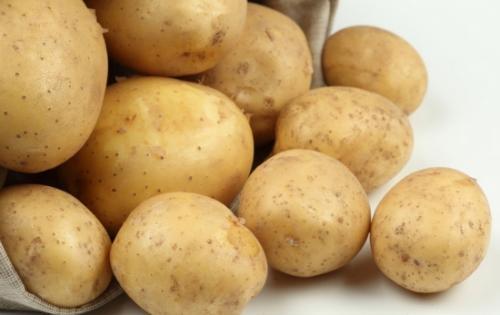 土豆需肥规律是什么?